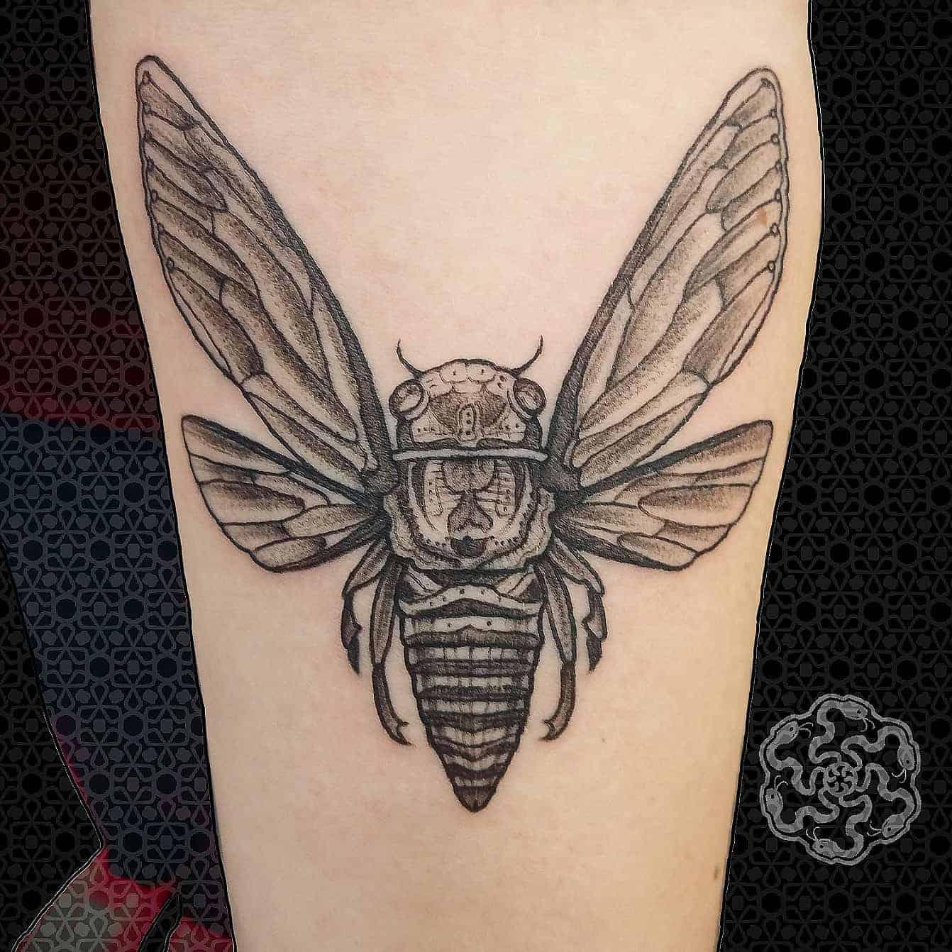 blackwork tattoo of a cicada on a forearm