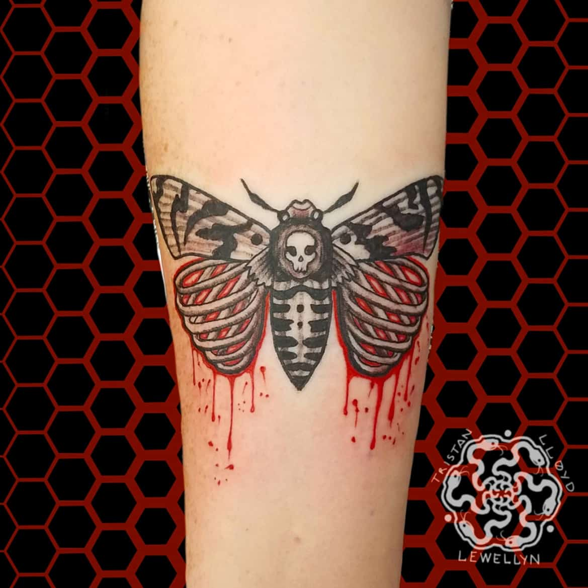 neotraditional tattoo of death head moth on a forearm