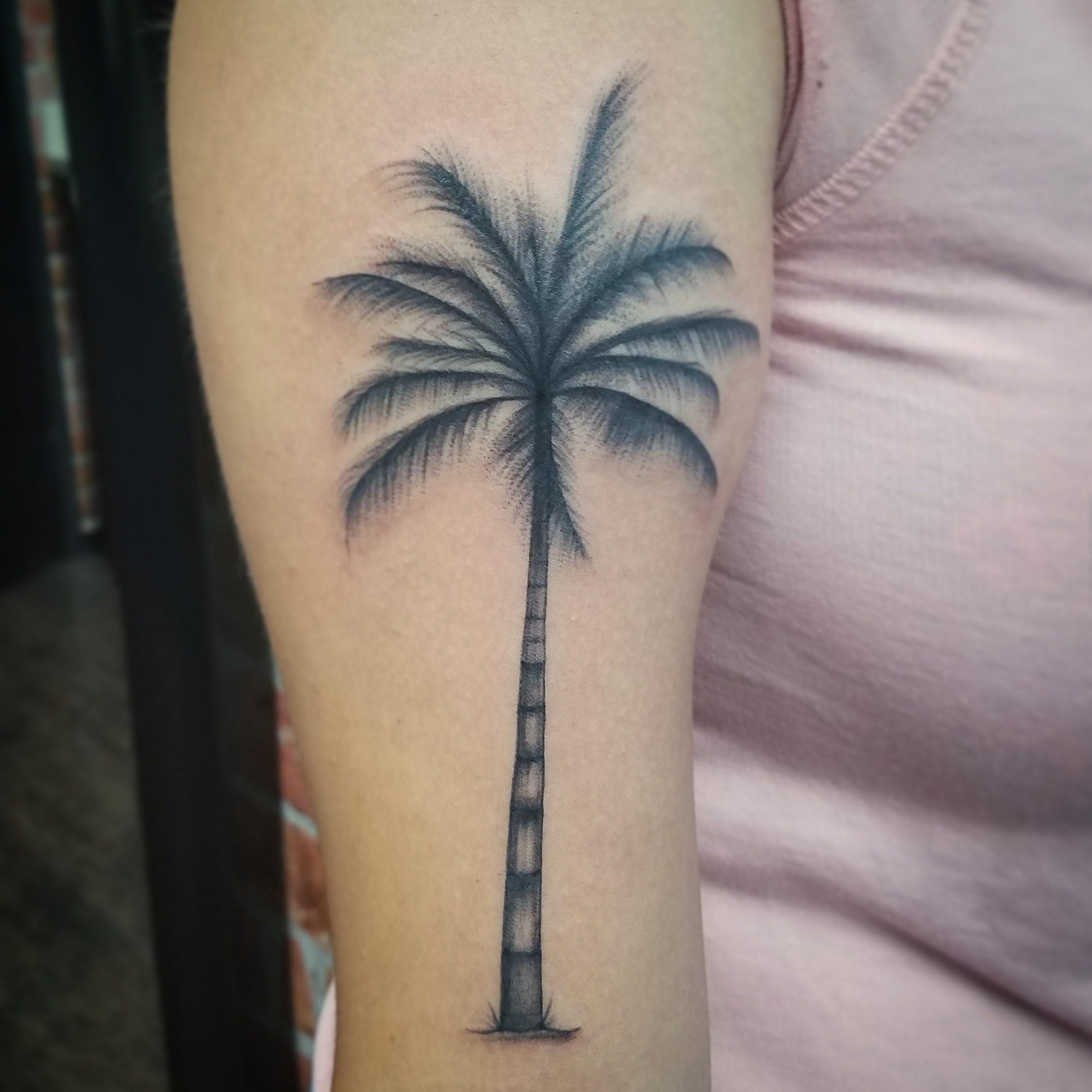 Palm tree -min