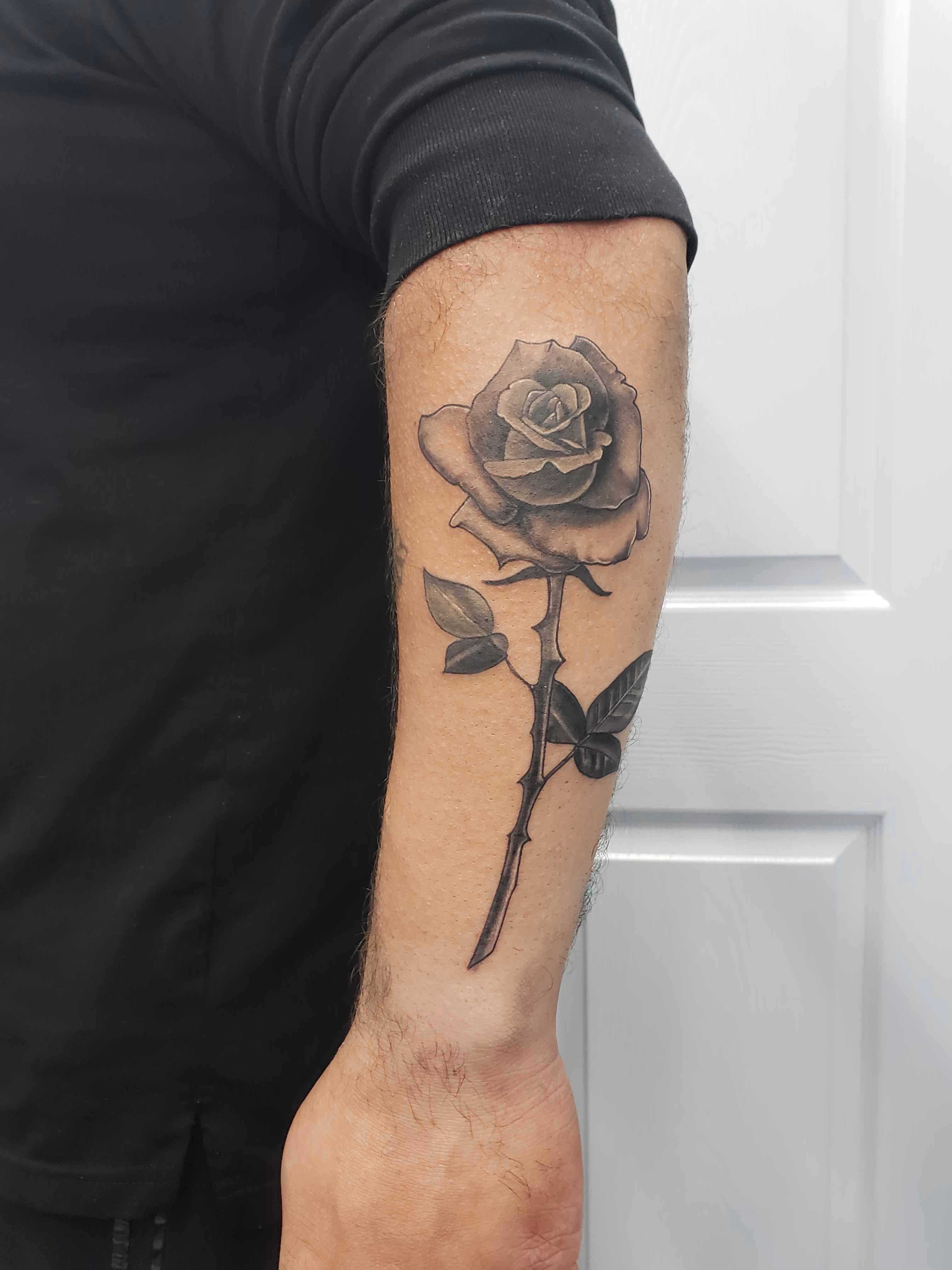 traditional tattoo of a rose on forearm