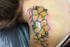 thumbs_American-traditional-plumeria-flowers-tattoo