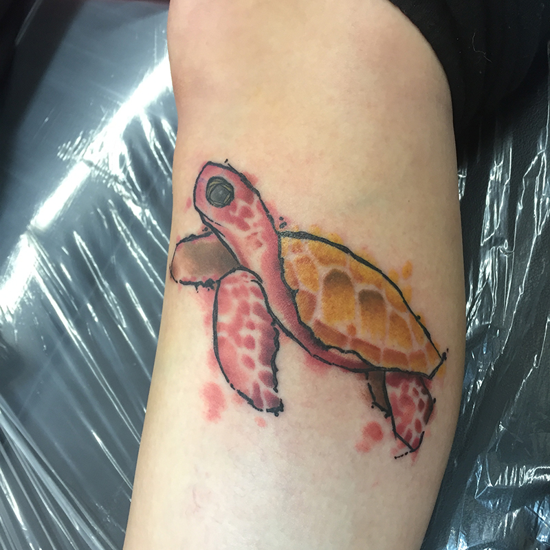 watercolor tattoo of turtle