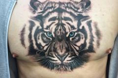 thumbs_tigers