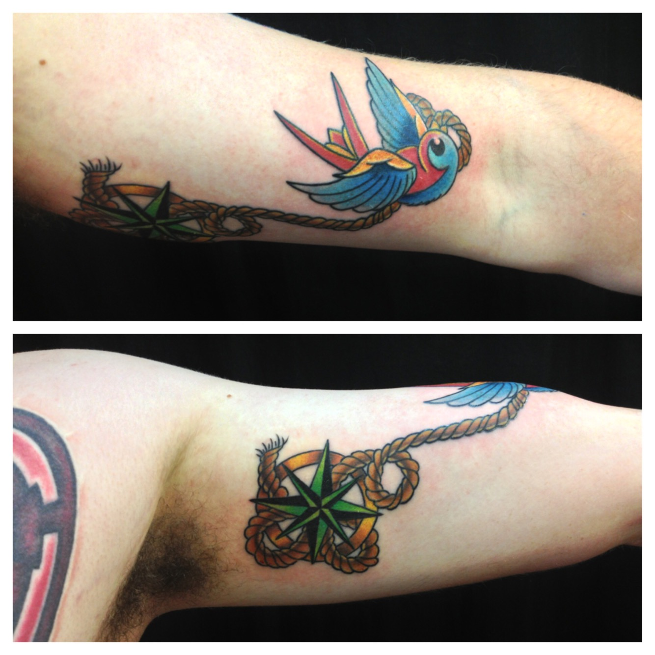 American traditional swallow and compass rose with rope