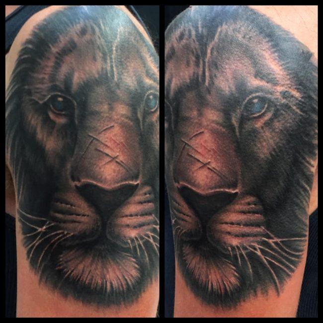 skott-tiger